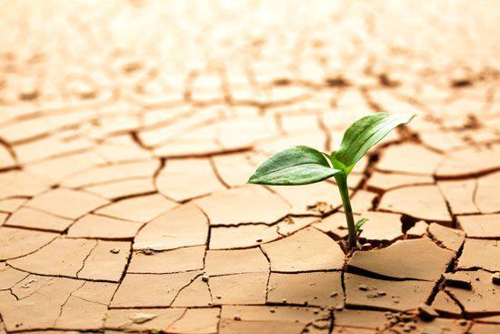 foto resiliencia